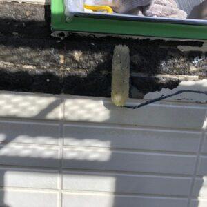 千葉県千葉市稲毛区 T様邸 屋根塗装・外壁塗装・防水工事 外壁の補修と下塗り (4)